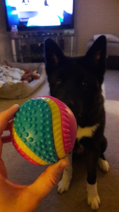Luna ball